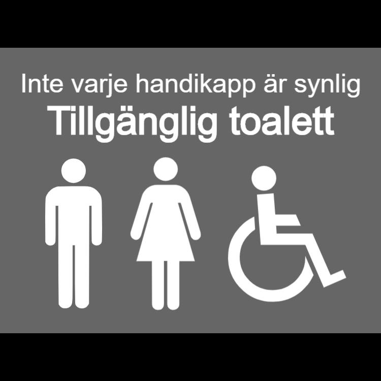 Grå tillgängliga toaletter skyltar - män, kvinnor, funktionshindrade