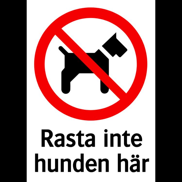 Rasta inte hunden här