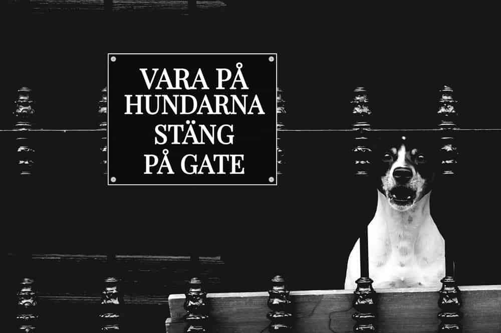Husdjurskyltar