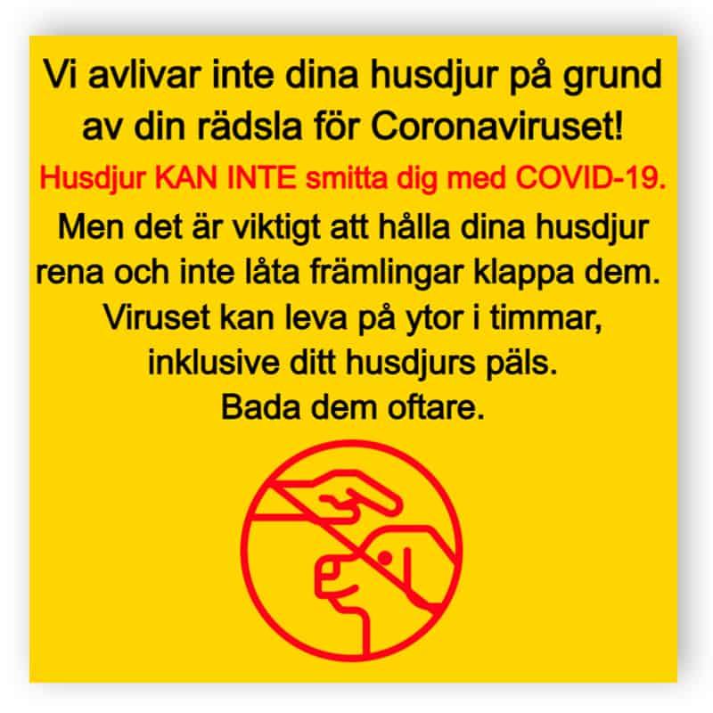 Husdjur kan inte smitta dig med COVID-19 - klistermärke